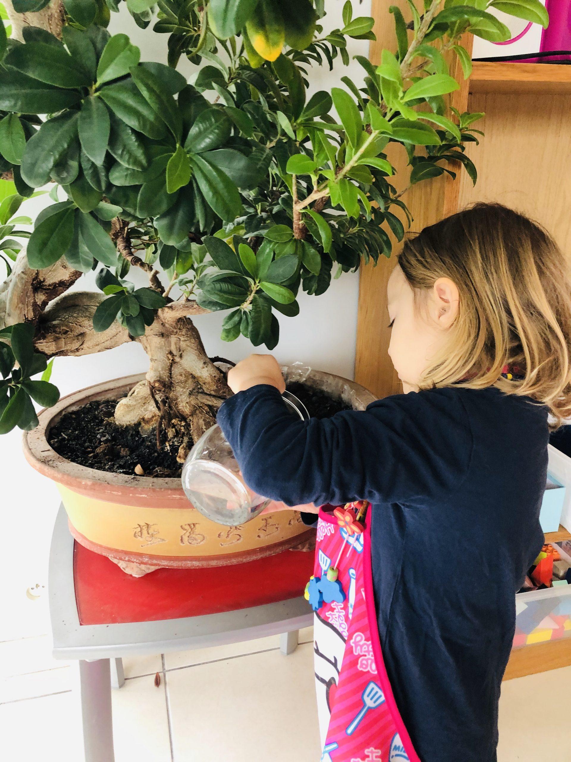 Growth Mindset 15 outils pour le cultiver avec nos enfants